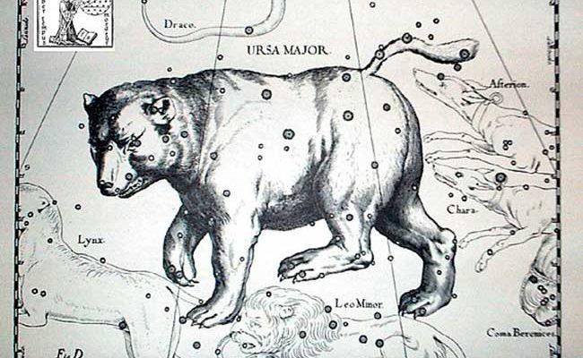 orsa maggiore silvana de mari