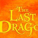the last dragon silvana de mari